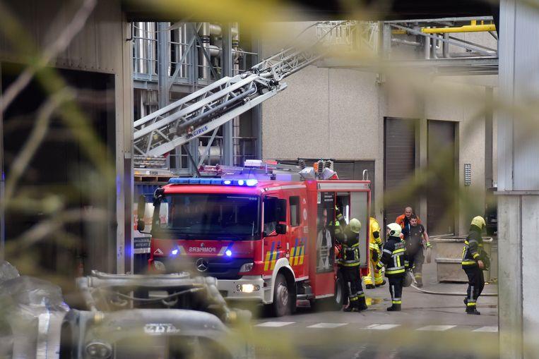 De brand bij Mydibel in Moeskroen was snel onder controle.