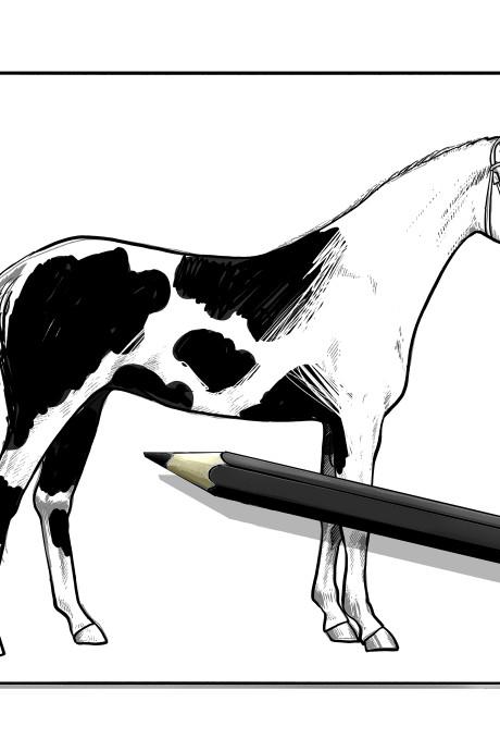 'Paardenvleesslachter' uit Dodewaard in hoger beroep tegen celstraf voor fraude