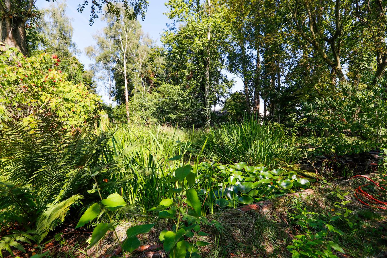 De Vergeten Tuin in Eindhoven.