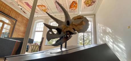 Dinofans opgelet: Beroemde triceratops-schedel komt naar Delft