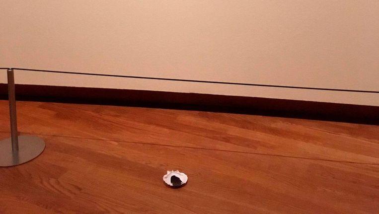 Één van de 411 schelpen verspreid door het Van Gogh museum. Beeld Fossil Free Culture