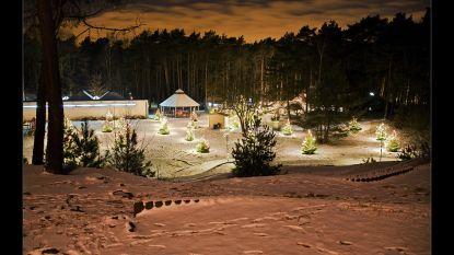 Feeërieke verlichting tijdens kerstperiode in Gerhagen