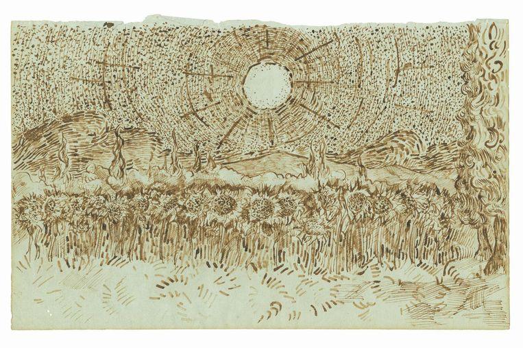 Veld zonnebloemen Augustus-september 1889, Saint-Rémy-de-Provence Beeld null