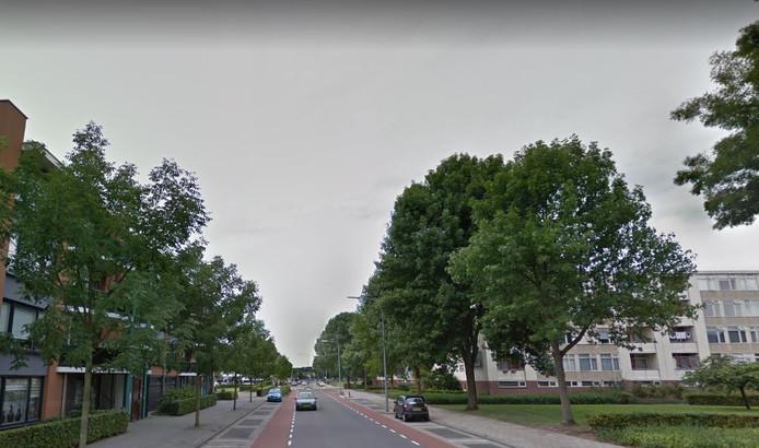 De Rembrandtlaan in Almelo.