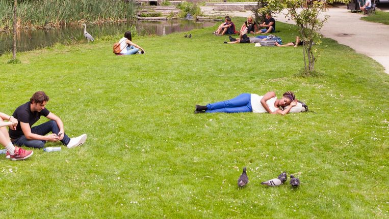 Het Amsterdamse Vondelpark, waar de 23-jarige Octavia (met het hoofd op haar tas) bijna een jaar rondhing met andere, al dan niet dakloze, jongeren van de 'Vondelparkgroep'. Beeld Stefanie Gratz