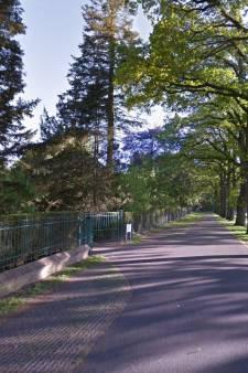 Namen gezocht voor begraafplaatsen in De Ronde Venen