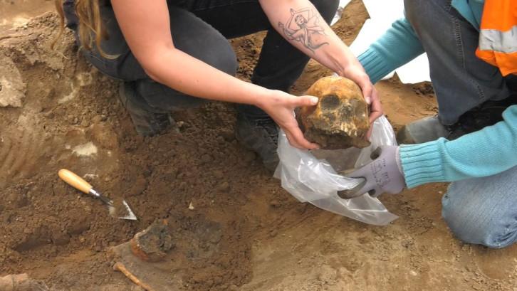 50 skeletten gevonden in Elspeet