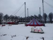 Mega koud klusje: midden in de sneeuw circustenten opbouwen voor het kerstcircus Den Bosch aan de Pettelaarse Schans