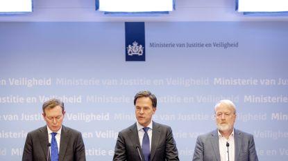"""Nederlandse autoriteiten: """"Virus in zuidelijke provincie Brabant niet meer in te dammen"""""""
