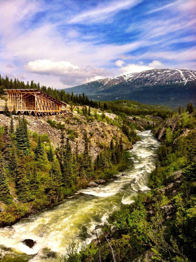 Een lodge in de wildernis van Alaska. In die staat vinden de avonturen van Jack Londons Buck de sledehond plaats. Beeld Getty Images