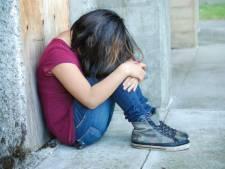 'Gezinnen en kinderen in Zeeland verkeren onnodig lang in onveiligheid'