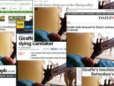 Afscheidskus van giraffe ontroert de wereld