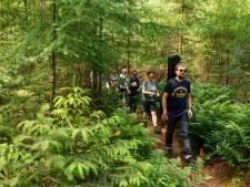Tim Knol wandelt: 'beter dan zuipen en vreten en vroeg dood te gaan'