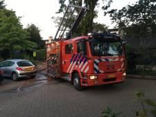 Brandweermannen Maasdam/Puttershoek en Klaaswaal krijgen lintje