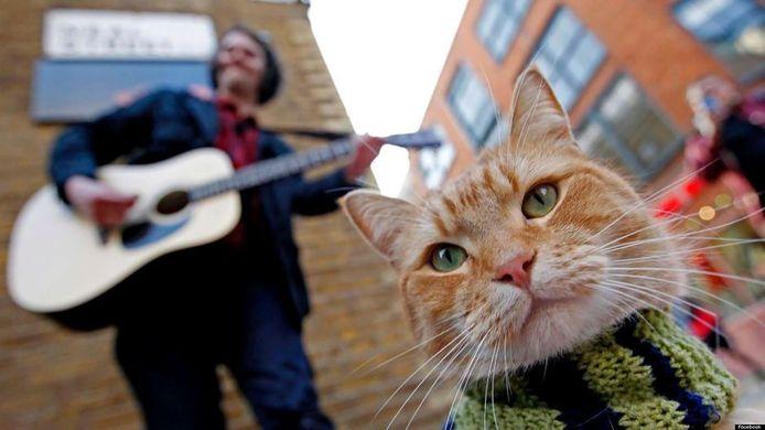 Filmstill uit 'A Street Cat Named Bob' (2016).