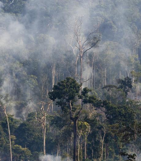 1,5 ton voor actie voor Amazone