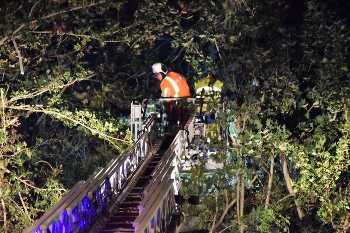 In de Van Buggenhoutlaan in Koksijde dreigde een boom op de rijbaan te vallen