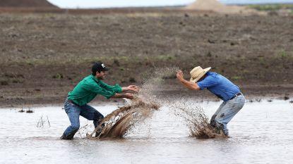 Hevige regen met vreugde onthaald in Australië