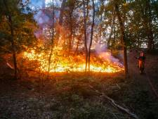 Korte maar felle bosbrand in Bakel waarschijnlijk aangestoken