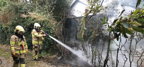 Politie blust brandende coniferen in Velp met tuinslang van de buren