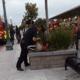 Kritiek op politie VS na hardhandige arrestatie scholier