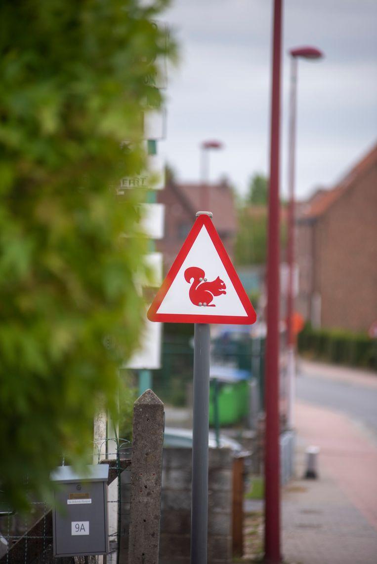 In de Pastoor De Vosstraat waarschuwt een bord voortaan voor overstekende eekhoorns.