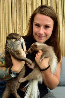 Gouderakse heeft otter, stinkdier en kat als huisdier