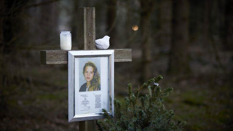 Het monument voor de vermoorde Nicole van den Hurk aan de Mierloseweg tussen Mierlo en Lierop, de plek waar haar lichaam werd gevonden in 1995. Beeld anp