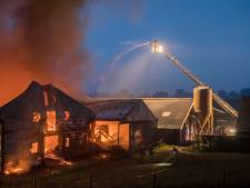 Duizenden kippen ontsnappen aan verwoestende brand in Wijk bij Duurstede