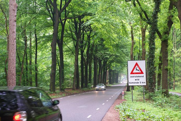 Bewoners van de Garderenseweg in Putten mogen meedenken met de provincie Gelderland over het groot onderhoud in 2023