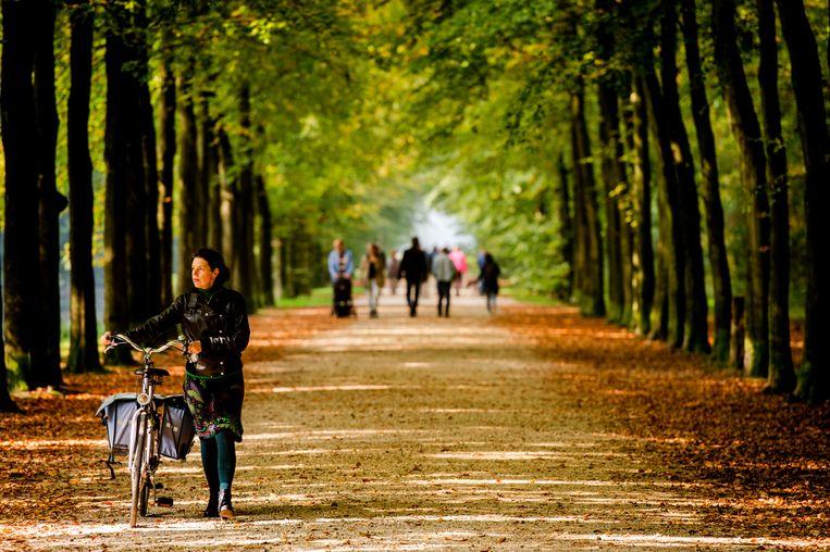 Wandelaars op Landgoed Groeneveld. Beeld ANP