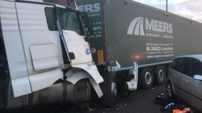 E314 in Maasmechelen weer vrijgemaakt na kettingbotsing met vijf auto's en drie vrachtwagens, één dode