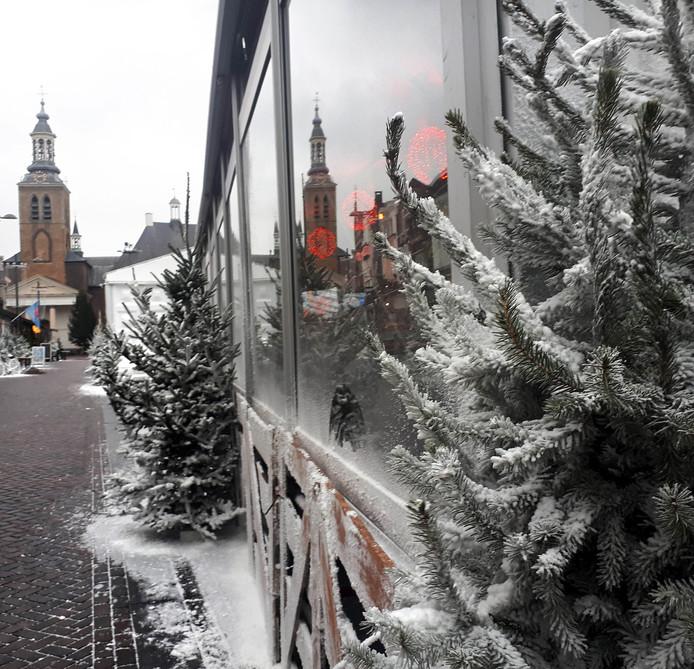 Kerstboom zaterdag 12 januari inleveren in gemeente Roosendaal.