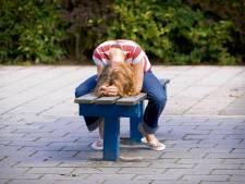 Een pestend kind kan ouders in de VS een flinke boete opleveren
