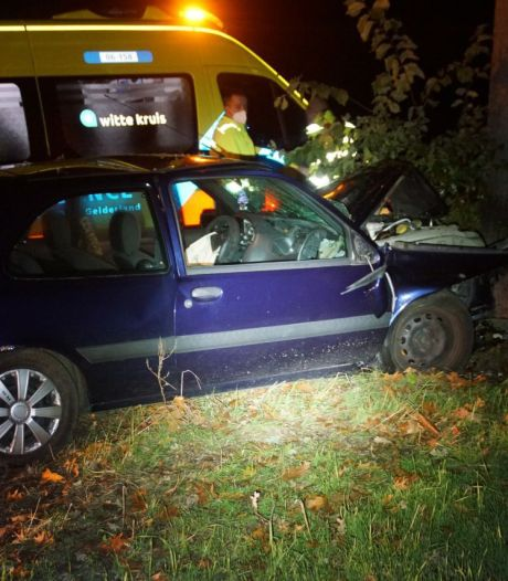 Auto botst tegen boom in Aalten, bestuurster raakt gewond