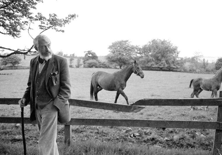James Patrick Donleavy in 1982 op zijn Ierse landgoed. Beeld AP
