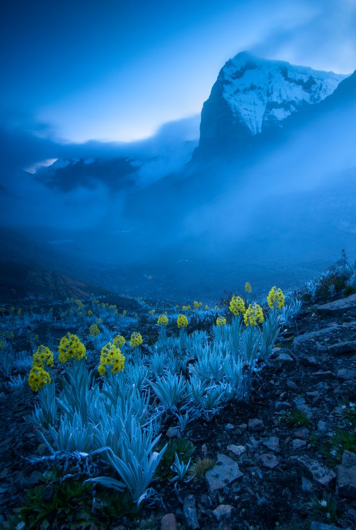 Out of the blue by Gabriel Eisenband, Colombia