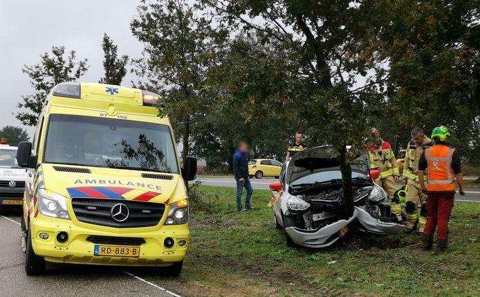 De auto kwam tot stilstand tegen een boom langs de Verlengde Arnhemseweg in Ede.
