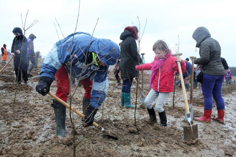 Jong en oud kwam bomen platen zondag tijdens de plantactiedag in het Hallerbos