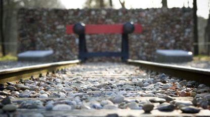 Nederlandse spoorwegen gaan Holocaust-slachtoffers betalen na dubieuze rol bij deportatie
