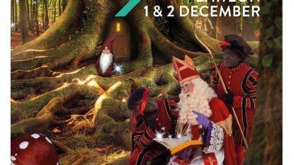 Uitnodigingen Sinterklaasshow te laat in de bus door staking post