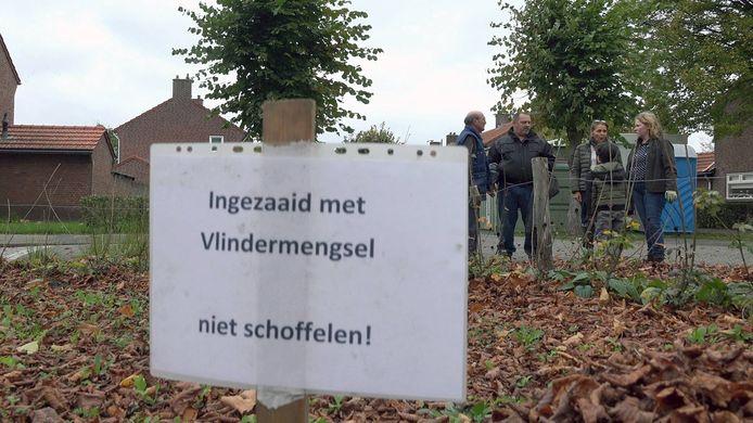 Het B-team ondersteunt Groen voor Grijs in de Oisterwijkse wijk Waterhoef.
