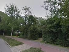 'Ga zorgvuldiger om met het kappen van bomen in Hardinxveld-Giessendam'