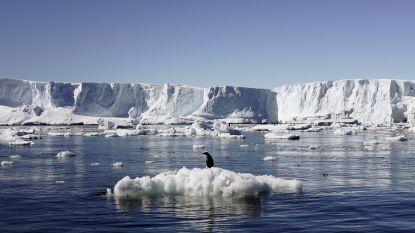 """Wetenschappers slaan alarm: """"IJs op Antarctica smelt veel sneller dan gedacht"""""""