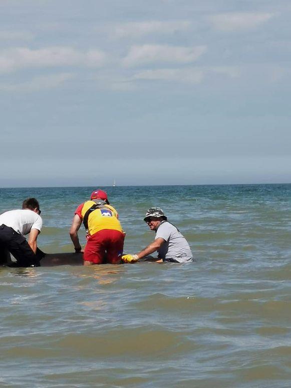 Luc in actie samen met twee redders.