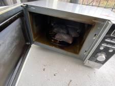 Bakken van broodjes gaat mis: brand in keuken van woning in Veenendaal