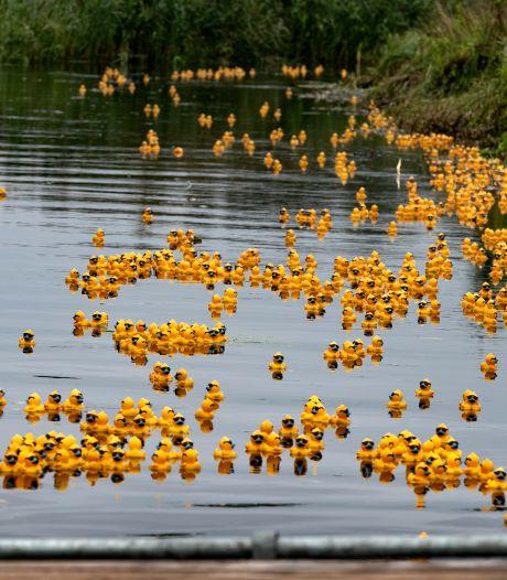 Duck van Toorrace in Valkenswaard echt zonder publiek
