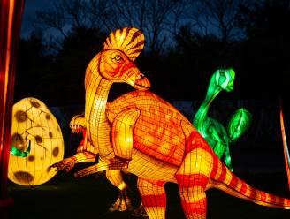 Rampjaar nu helemaal compleet: Planckendael moet lichtfestival Dinolights annuleren
