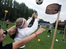 Korfbalclub en school krijgen kunstgras in Zetten