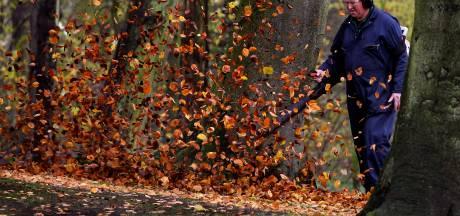 Dit is waarom er blad wordt geblazen in het Doetinchemse bos